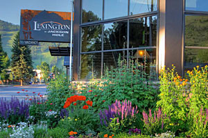 The Lexington at JH - 1 Block to Town Square!